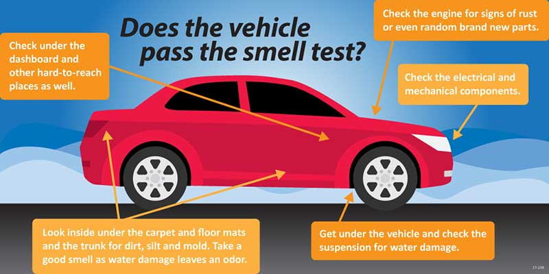 """Does the vehicle pass the smell test?"" Infographic"