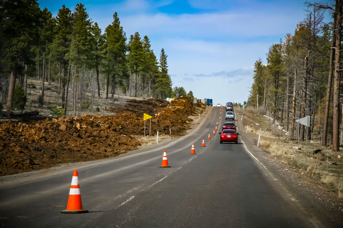 Traffic cones restrict traffic to one lane of tree lined roadway.