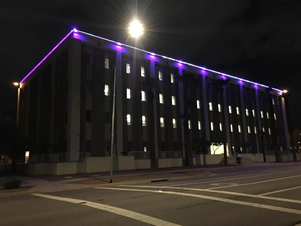 MVD Building with Purple Lights