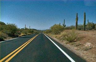 Organ Pipe Cactus Parkway