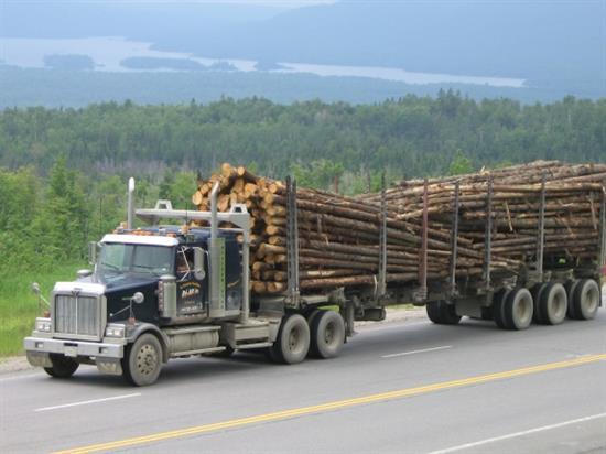 Triple axle trailer loaded with logs
