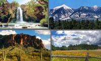 Scenic Landscape collage