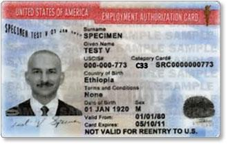 Employment Authorization Card C33