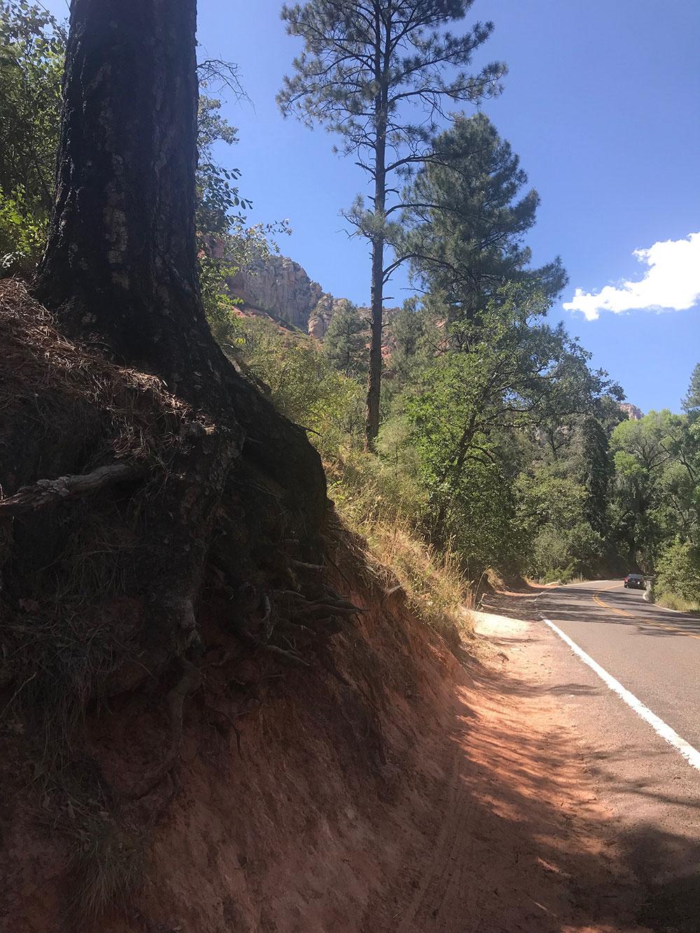 Hazard Tree Example 1