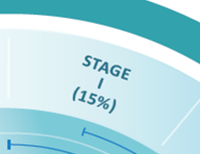 Stage I (15%)