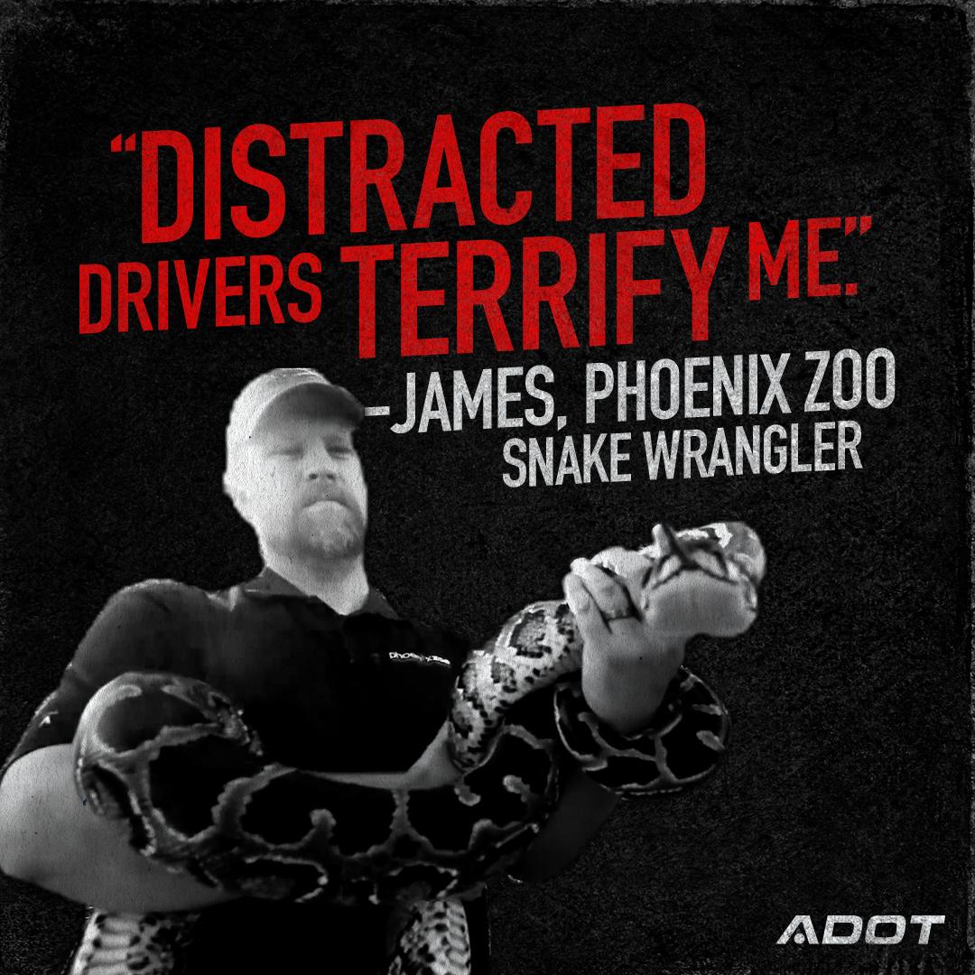 Distracted driver PSA snake wrangler