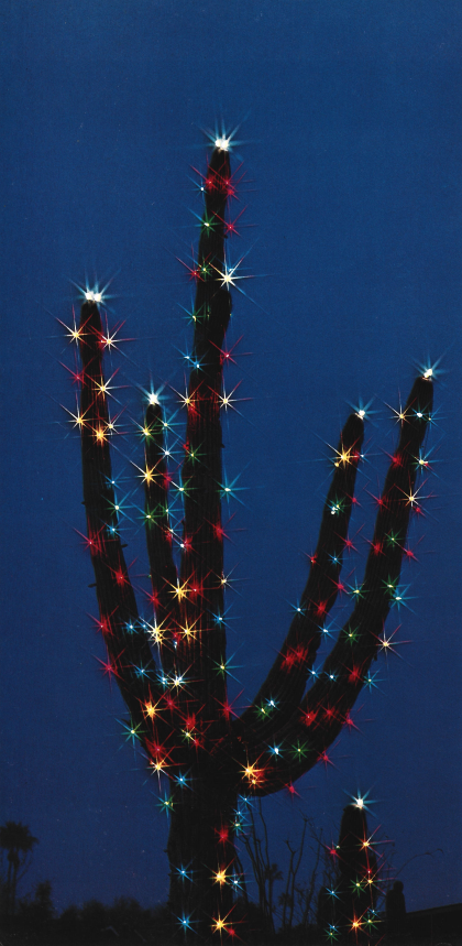 Christmas Lights Adorn a Saguaro Cactus by Dick Dietrich