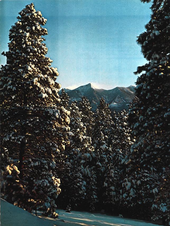 Snow on San Francisco Peaks by Peter Bloomer