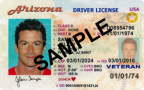 AZ Driver License Sample