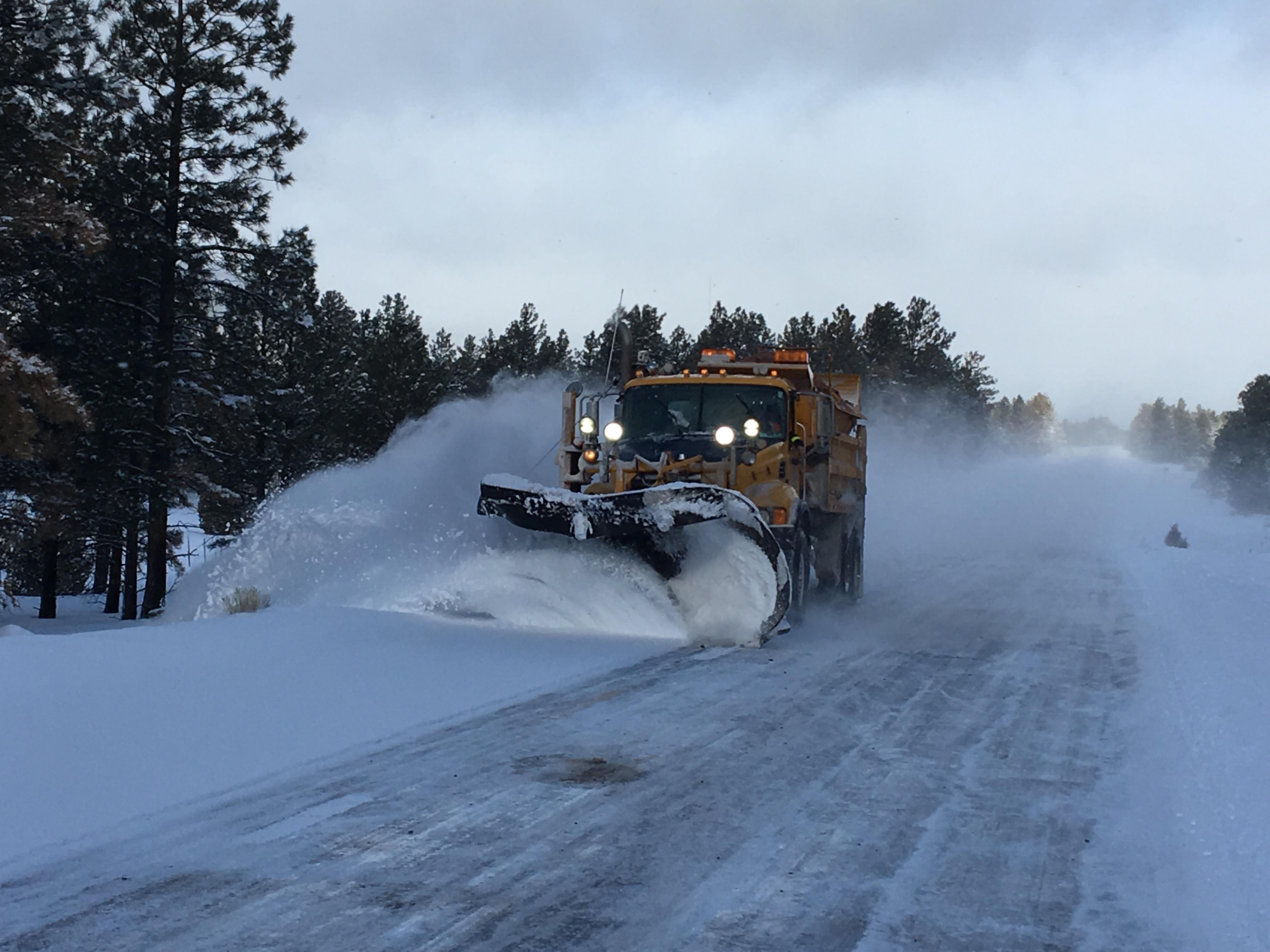Snowplow training