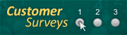 MVD Customer Surveys button