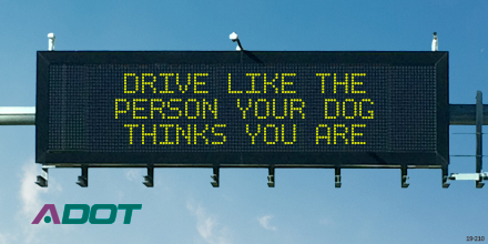 Dynamic Message Board: Drive Like The Person Your Dog Thinks You Are
