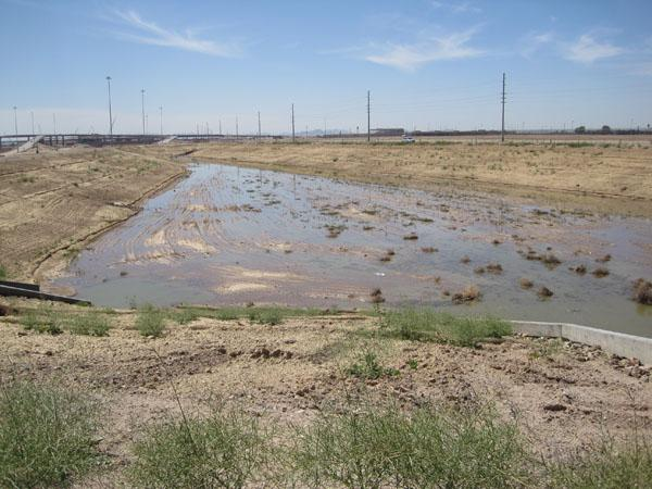 Retention Basin along Loop 303