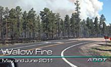 Smoke from the Wallow fire rises about the trees along the highway