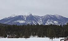 Snowy mountains behind forest