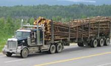 Triple axle trailer loaded with logs