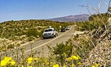 Cars on a two lane road with yellow wildflowers in the foreground and mountains in the background