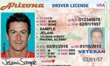 Driver License Example