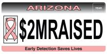 Breast cancer awareness specialty license plate.