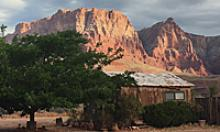 Rustic cabin and tree with rock buttes in the background