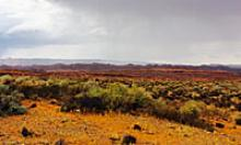 Flat desert landscape with rain falling in the distance.
