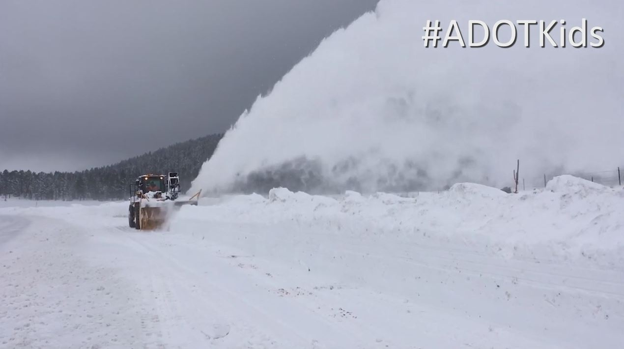 Zoom Video Background-Snow Blaster